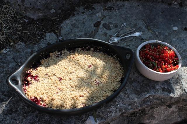 Crumble aux fruits d'été et flocon d'avoine